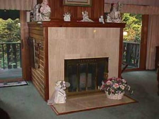 Whisperin' Pines Chalet: Honeymoon fireplace