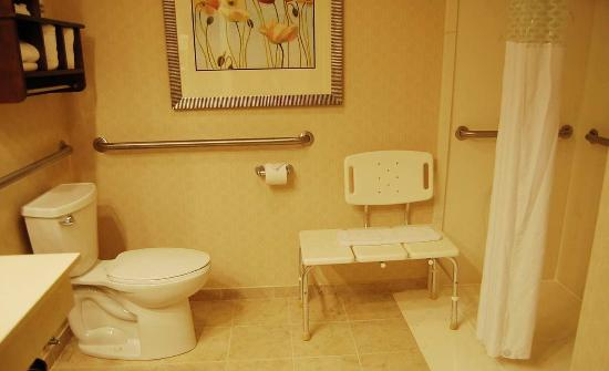 Batesville, IN: Accessible Room Bathroom with Roll In Shower