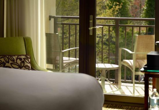 Dunwoody, จอร์เจีย: Guest Room - Balcony
