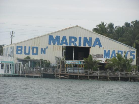 Eatery on the water picture of miss islamorada charter for Bud n mary s fishing report