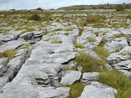 The Burren Foto