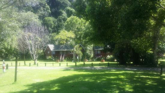 Cremorne Riverside Holiday Resort : 20160205_102930_large.jpg