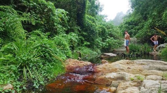 Tsitsikamma National Park, Sudáfrica: The David Lane Hiking Trail