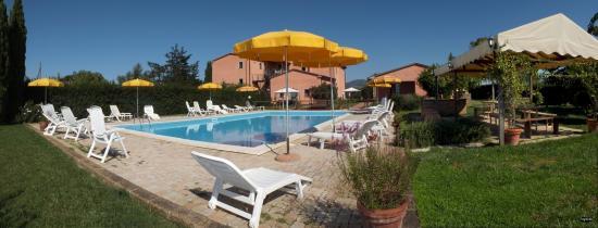 Podere Casalpiano: panoramica della piscina, solarium e gazebo con tavoli