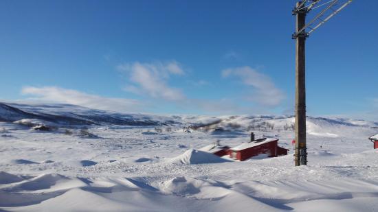 The Bergen Railway: Snow