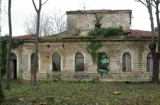 Coltano, Italia: Vista
