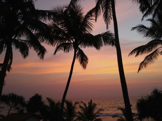Μπεντότα, Σρι Λάνκα: 2016-02-11 06_large.jpg