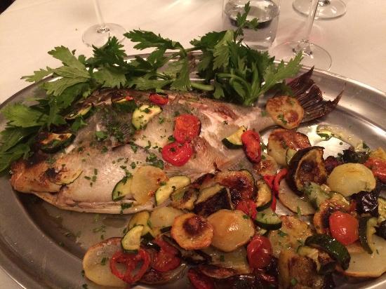 Pesce Balestra Picture Of Colle De Siena Cassino Tripadvisor