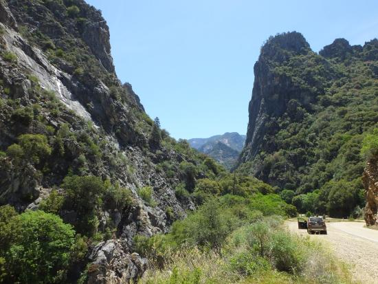 kings canyon national park picture of kings canyon scenic byway rh tripadvisor co za