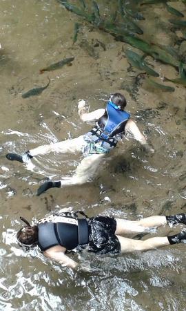 Nobres, MT : flutuação na saída