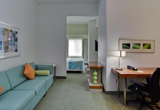 Altamonte Springs, FL: King Suite Living Area