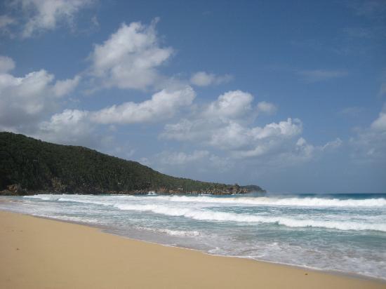 Фотография Lambert Beach Resort