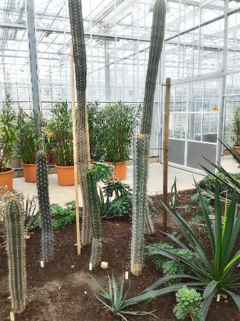 Salaspils Botanic Garden