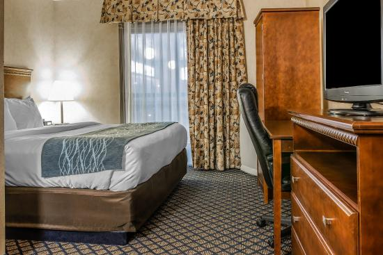 Coldwater, MI: Guest Room