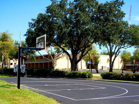 Celebration Suites: Basketball