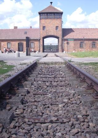 Krakow Trip - Auschwitz Tours: Auschwitz Birkenau Museum