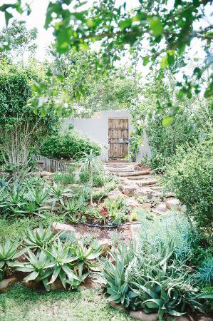 Mackaya Bella Guest House: Indigenous Gardens