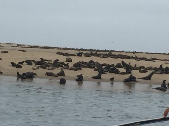 Walvis Bay, Namibië: photo0.jpg