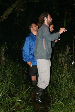 Tortuguero, Costa Rica: David en la caminata nocturna