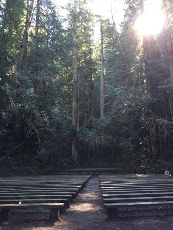 Guerneville, Californien: Armstrong Redwood State Reserve