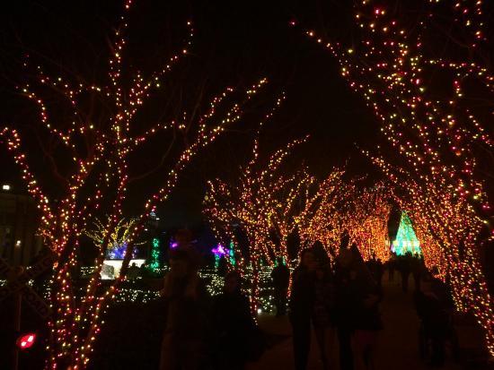 Garden Lights Holiday NightsPicture of Atlanta Botanical