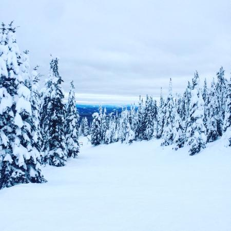 Big White, Canada: photo0.jpg