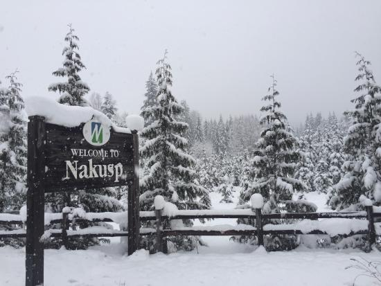 CMH K2 Rotor Lodge: Nakusp sign.....Lots of snow