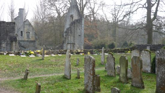 Wiosna na cmentarzu przy Minster Lovell Hall.
