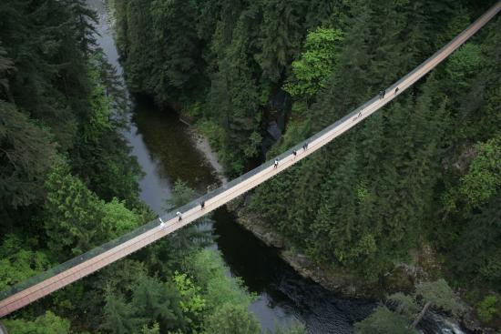 Kuzey Vancouver, Kanada: Capilano Suspension Bridge