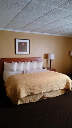 Oswego, NY: Standard Suite