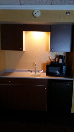 Quality Inn & Suites Riverfront: Standard Suite