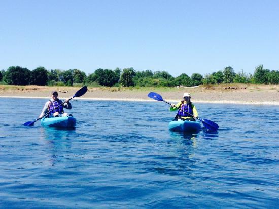 Corvallis, Oregón: Willamette river kayaking