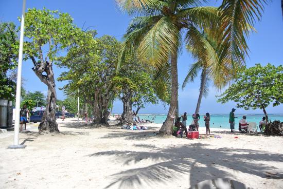 Sainte-Anne, Guadalupe: plage st anne