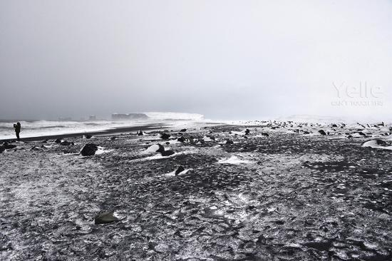 Black Sand Beach Picture Of Gateway To Iceland