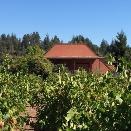 Healdsburg, CA: Our family winery