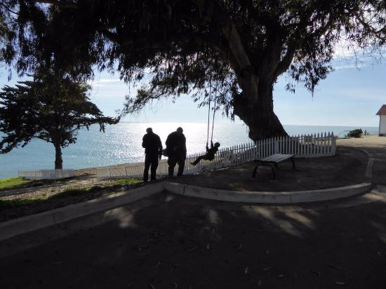 Avila Beach, CA: A swing - between the lighthouse and the trolley return spot