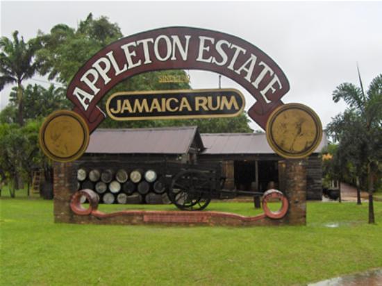 Antsman Tour Jamaica: Appleton Rum Tour
