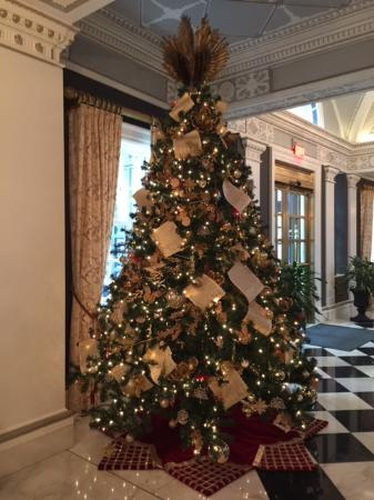 Washington Dc Christmas.Christmas Tree In Foyer Picture Of The Jefferson