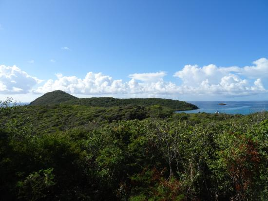 Coral Bay, St. John: View of Ram's Head from our table