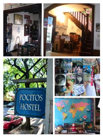 Pocitos Hostel