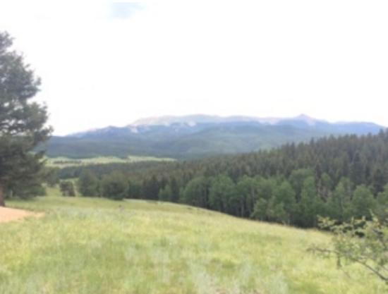 Divide, Colorado: View from campsite 106