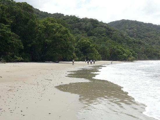 Cape Tribulation, Australia: 20151004_124328_large.jpg