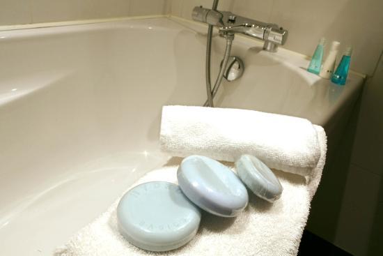 Pessac, Francia: Bathroom amenities