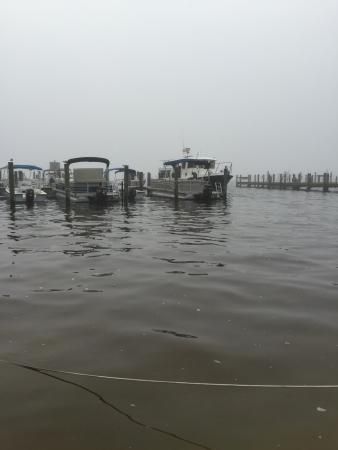 Jensen's Marina Boat Rentals : boat dock at Jensen's