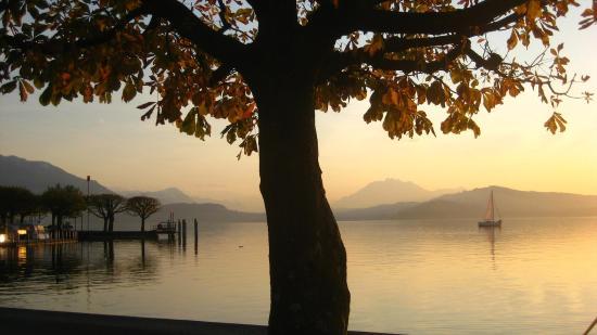 ซัก, สวิตเซอร์แลนด์: Lake of Zug