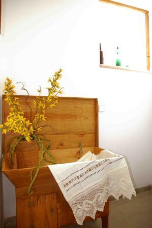 Sineu, Espagne : Winter Flora