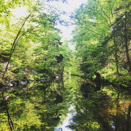 Dartmouth, Canadá: A mirror image. So peaceful