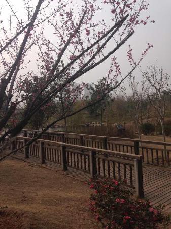 Huanggang, China: 遗爱湖公园