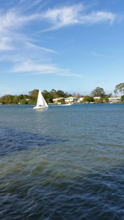 Tewantin, Австралия: 20151230_165607_large.jpg