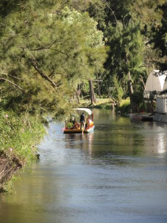 Barcos De Xochimilco Picture Of Floating Gardens Of Xochimilco Mexico City Tripadvisor